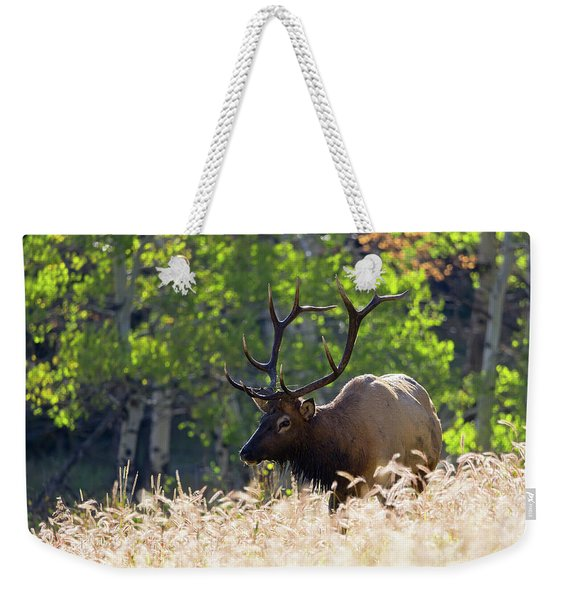 Fall Color Rocky Mountain Bull Elk Weekender Tote Bag
