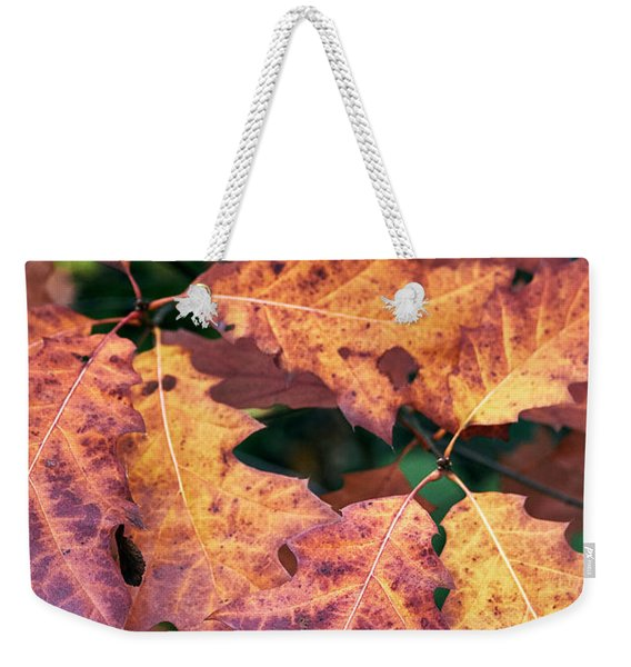 Weekender Tote Bag featuring the photograph Fall Flames by Whitney Goodey