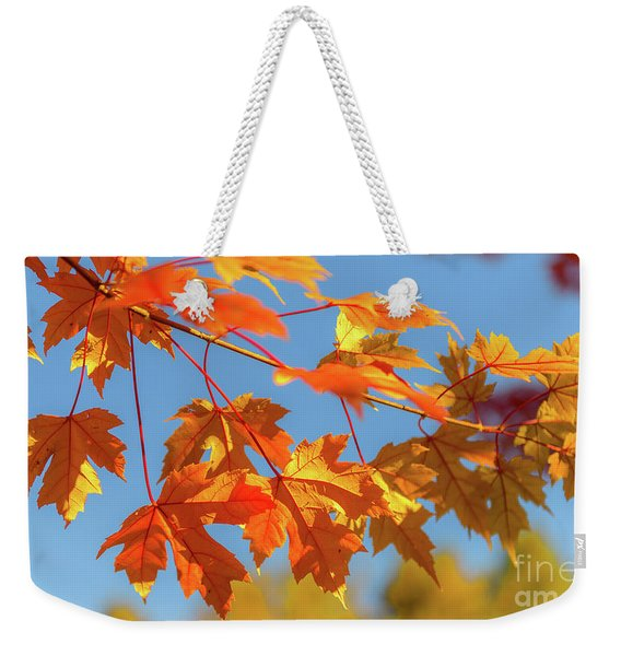 Weekender Tote Bag featuring the photograph Fall Foliage by Dheeraj Mutha