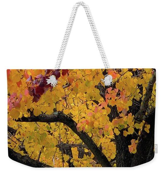 Fall In Carlyle Weekender Tote Bag