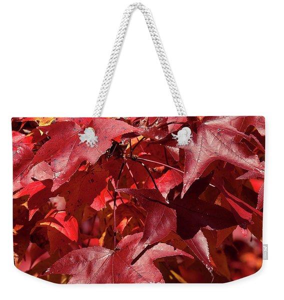 Fall Sweetgum Leaves Df005 Weekender Tote Bag