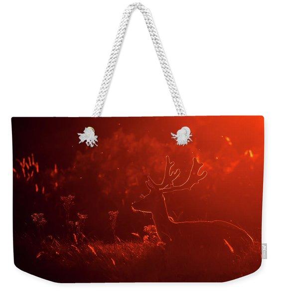 Fallow Deer Silhouette At Sunset Weekender Tote Bag