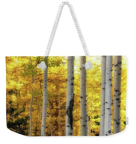 Fall's Visitation Weekender Tote Bag