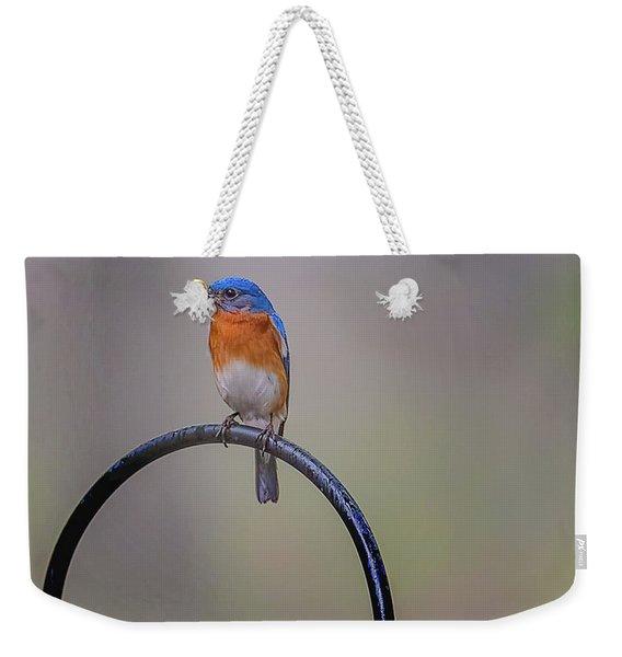Feeding Time Weekender Tote Bag