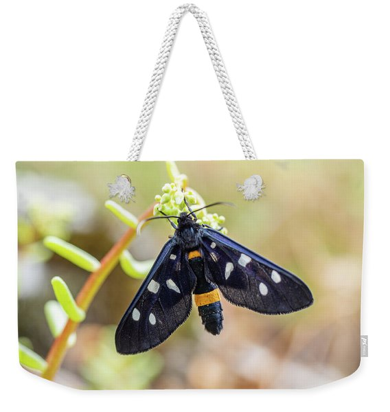 Fegea - Amata Phegea -black Insect With White Spots And Yellow Details Weekender Tote Bag