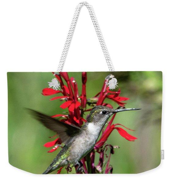 Female Ruby-throated Hummingbird Dsb0325 Weekender Tote Bag