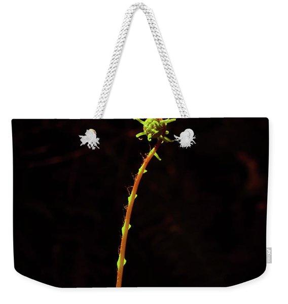 Fiddlefern Superstar Weekender Tote Bag