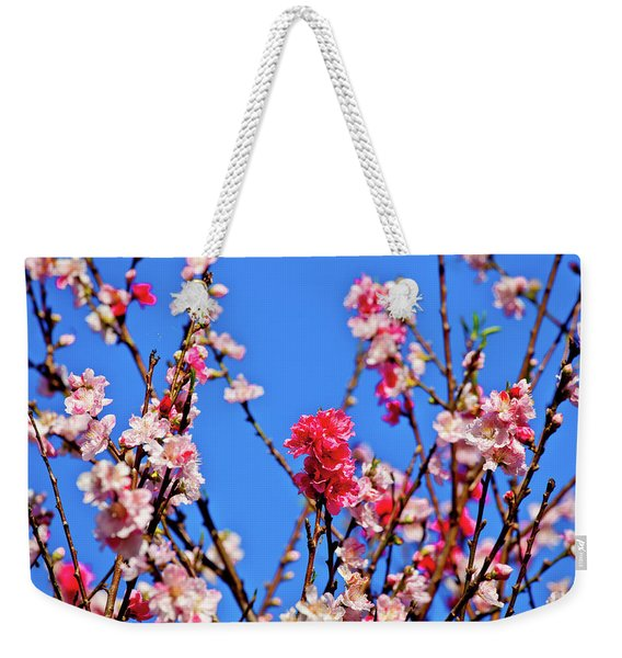Field Of Flowers In Blue Sky Weekender Tote Bag