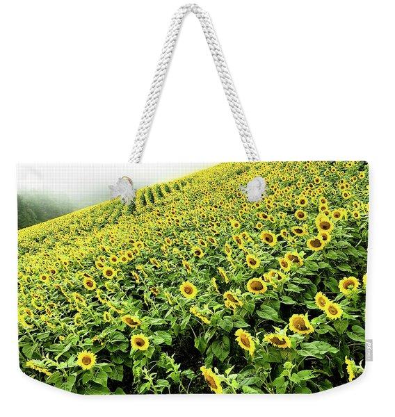 Fields Of Yellow Weekender Tote Bag