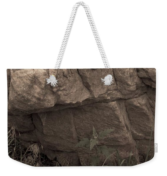 Weekender Tote Bag featuring the photograph Figurative V by Catherine Sobredo