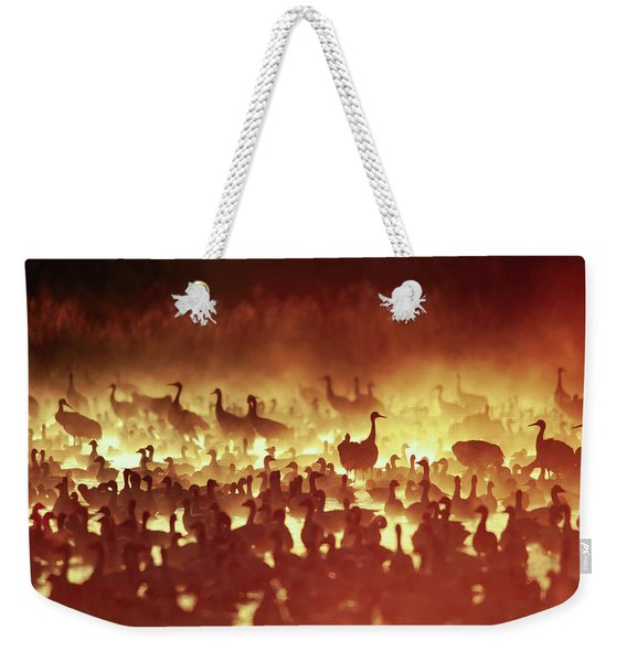 Fire Mist Sans Flight Weekender Tote Bag