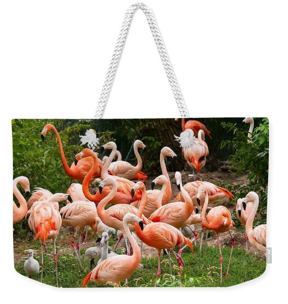 Flamingos Outdoors Weekender Tote Bag