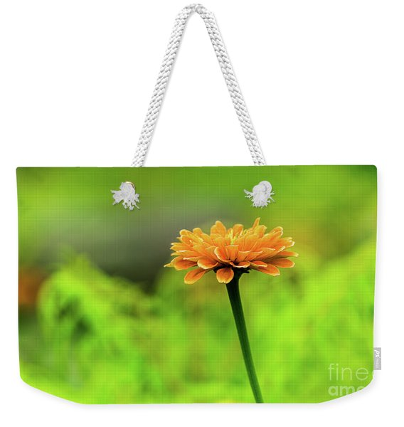 Weekender Tote Bag featuring the photograph Flower by Dheeraj Mutha