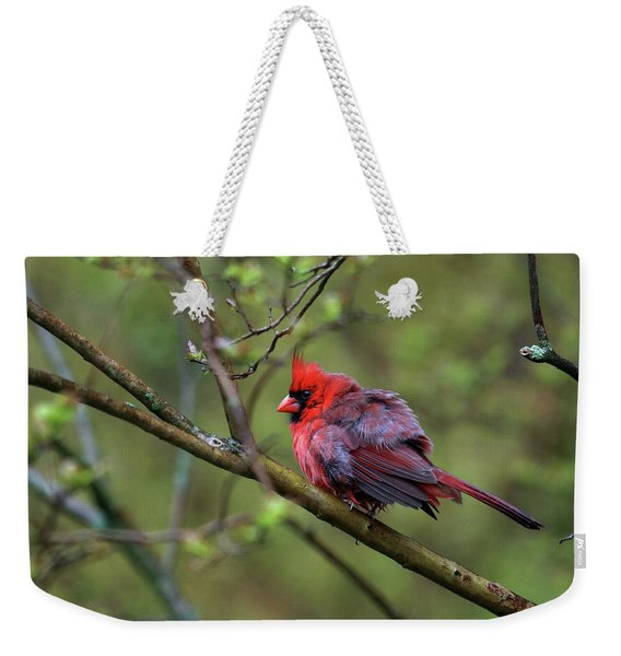 Fluffing Up My Feathers Weekender Tote Bag