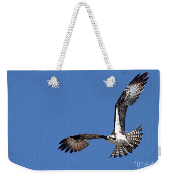 Focused Osprey Weekender Tote Bag