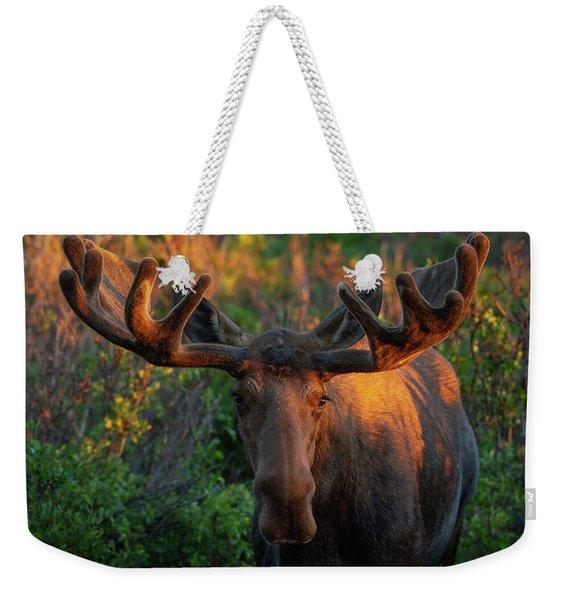 Forest King Sunrise Weekender Tote Bag