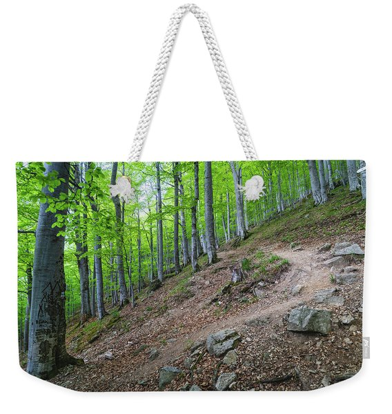 Forest On Balkan Mountain, Bulgaria Weekender Tote Bag