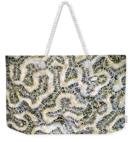 Fossilized Brain Coral Weekender Tote Bag