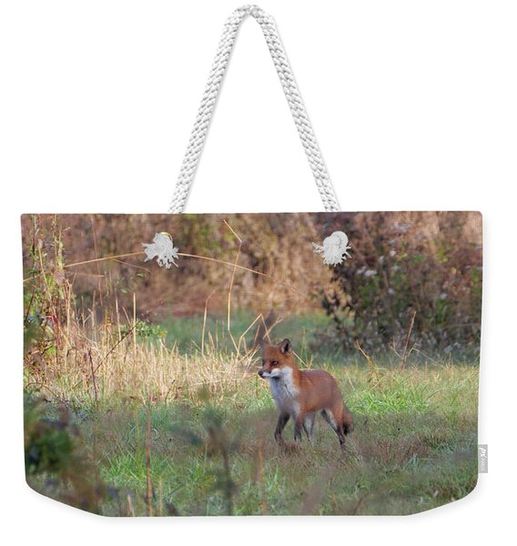 Fox In The Wild Weekender Tote Bag