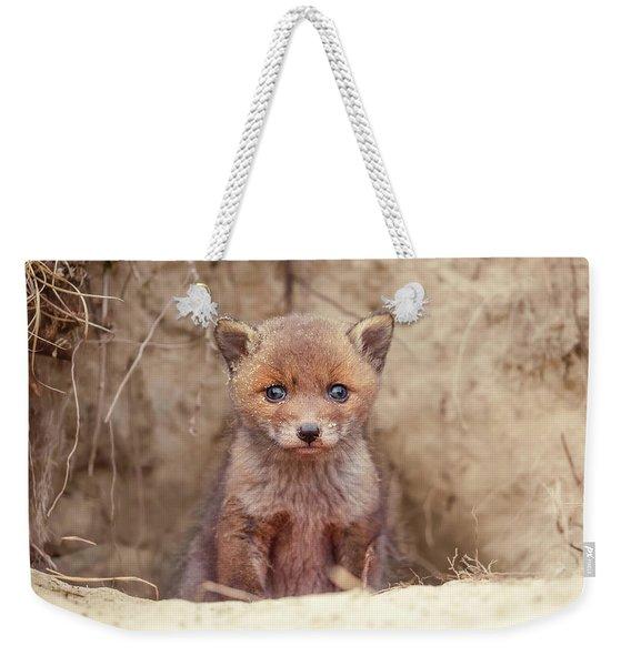 Fox Kit Series - Newborn Fox Baby Weekender Tote Bag