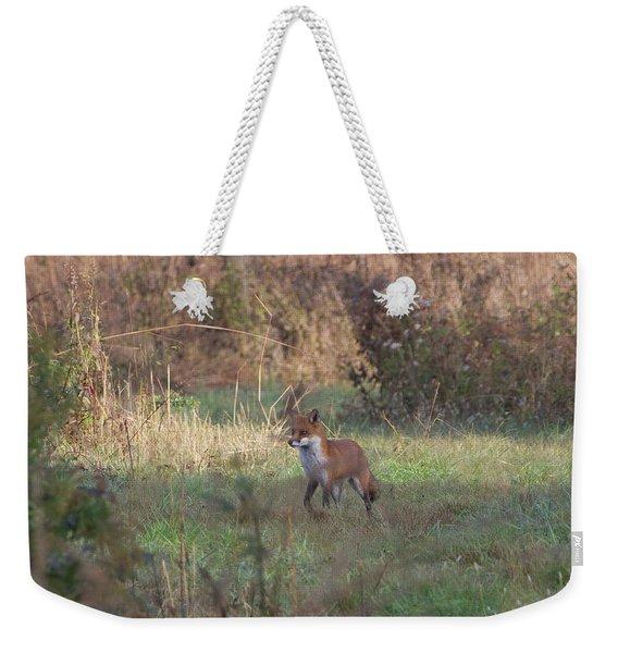Fox On Prowl Weekender Tote Bag