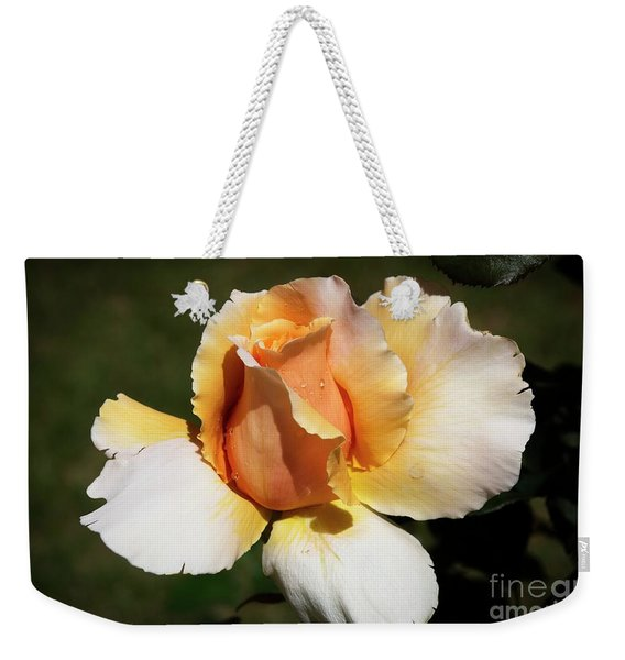 Fragrant Rose Weekender Tote Bag