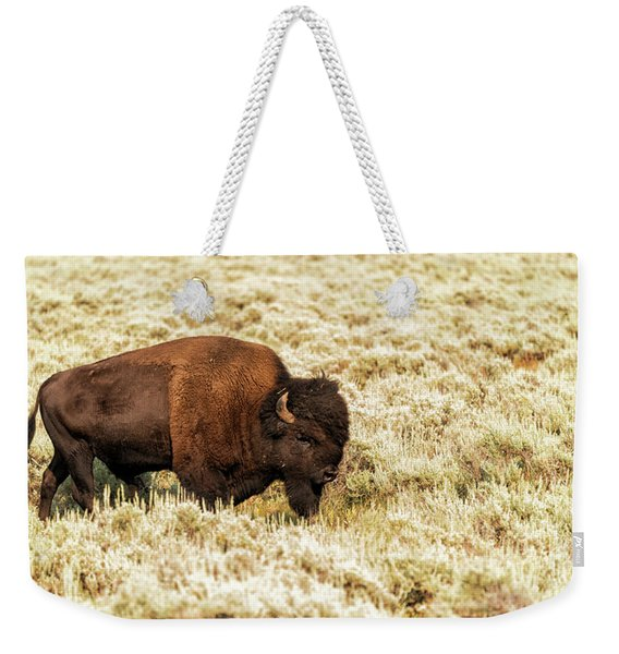 Weekender Tote Bag featuring the photograph Roam Free by Dheeraj Mutha