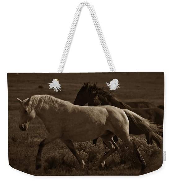 Weekender Tote Bag featuring the photograph Freedom II by Catherine Sobredo