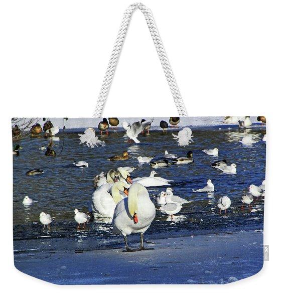 Frozen Lake. Weekender Tote Bag