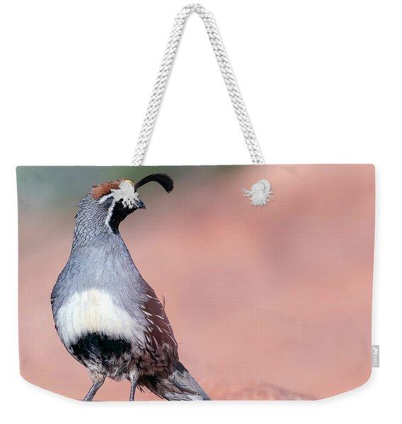 Gambels Quail Three Weekender Tote Bag