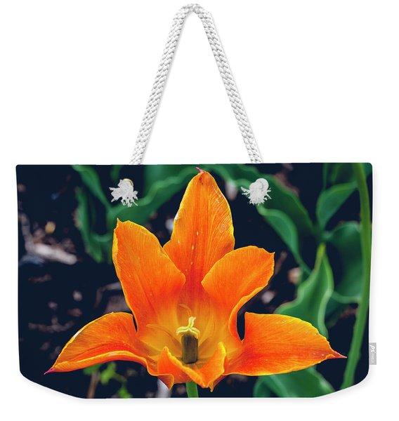 Geometric Nature Weekender Tote Bag