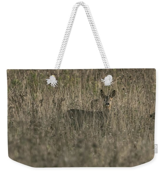 Ghosts In The Grass Roe Deer Weekender Tote Bag