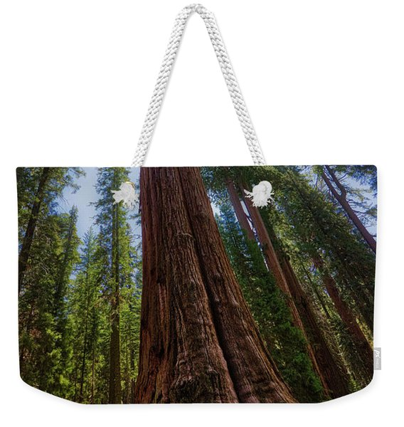 Weekender Tote Bag featuring the photograph Giant Sequoia Tree by Andy Konieczny