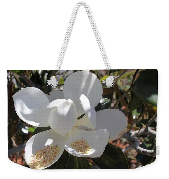 Gigantic White Magnolia Blossoms Blowing In The Wind Weekender Tote Bag