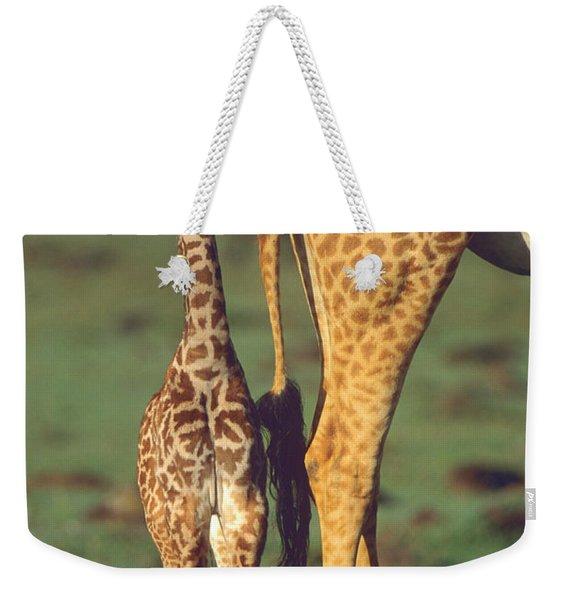 Giraffe Calf And Mother, Africa Weekender Tote Bag