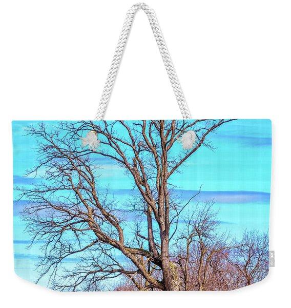 Gnarled Tree And Marbled Sky Weekender Tote Bag