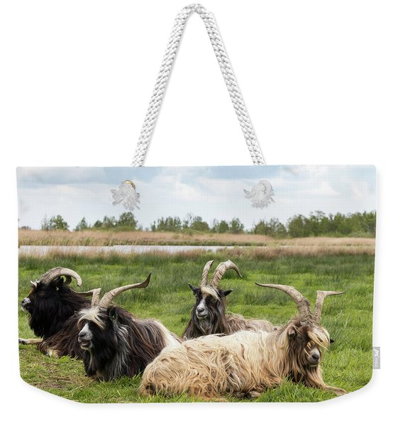 Weekender Tote Bag featuring the photograph Goats  by Anjo Ten Kate