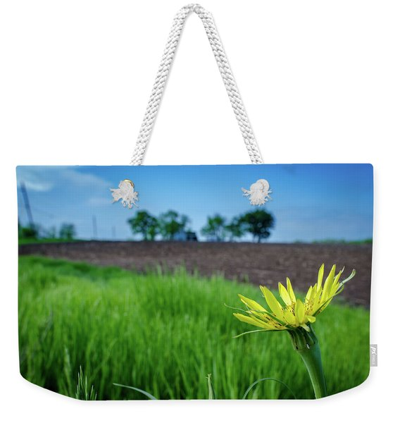 Goat's Beard On Nelson Farm II Weekender Tote Bag