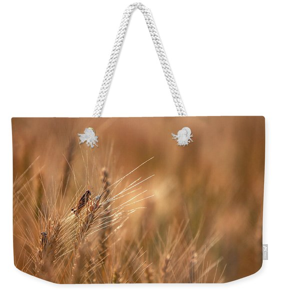 Grasshopper Wheat Weekender Tote Bag