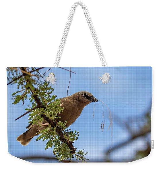 Gray-headed Social Weaver Weekender Tote Bag