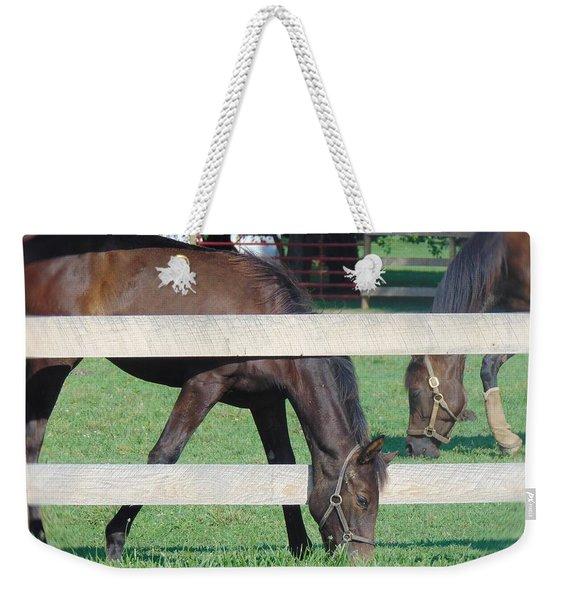 Grazing Beauty Weekender Tote Bag