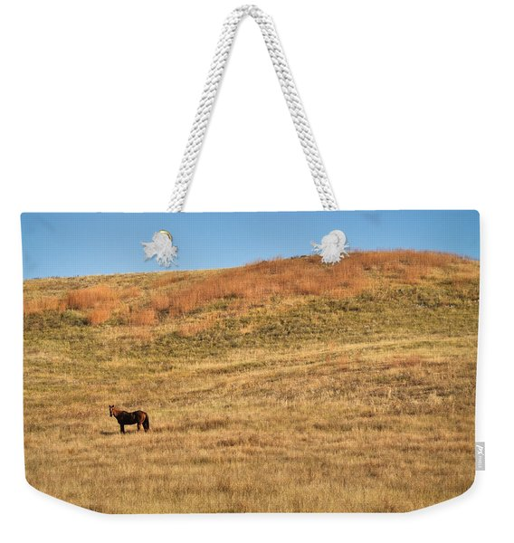 Grazing In The Grass Weekender Tote Bag