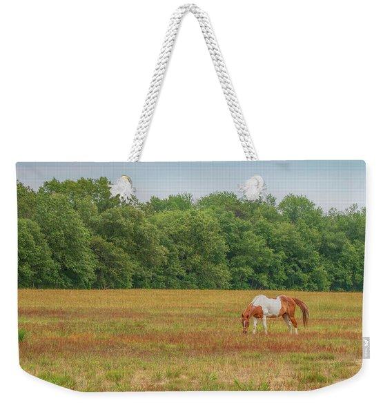 Grazing Paint Horse Weekender Tote Bag