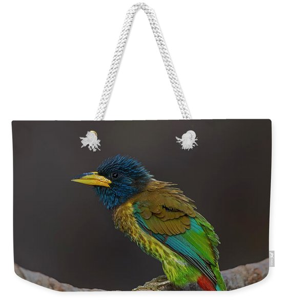 Great Barbet Weekender Tote Bag