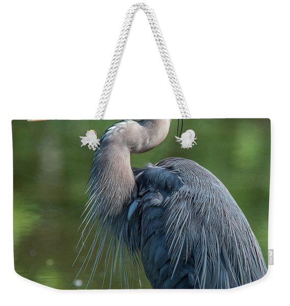 Great Blue Heron After Preening Dmsb0157 Weekender Tote Bag