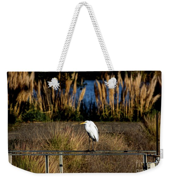 Great Egret Posing By Golden Pampas Grass Weekender Tote Bag