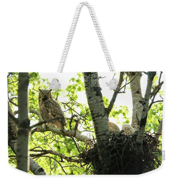 Great Horned Owl And Babies Weekender Tote Bag