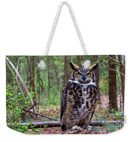 Great Horned Owl Standing On A Tree Log Weekender Tote Bag