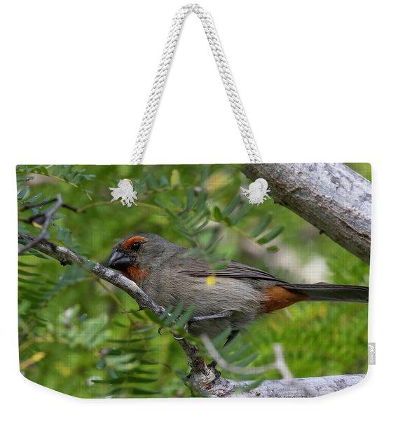 Greater Antillean Bullfinch Weekender Tote Bag