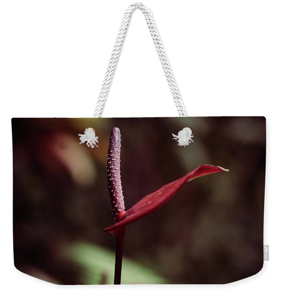 Weekender Tote Bag featuring the photograph Greedy by Michelle Wermuth